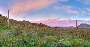 view of the arizona desert